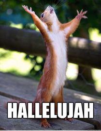 hallelujah-squirrel