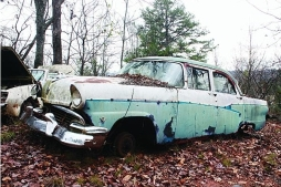 56 Ford ugly 2